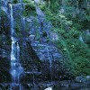 Waterfall, Minnamurra NP