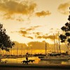 Early morning, Manly Boat Harbour
