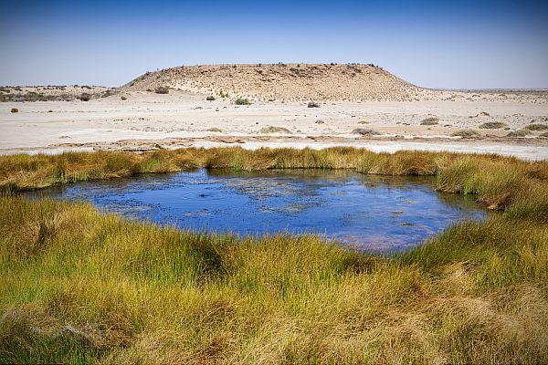 Mound Springs