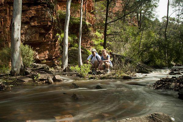 Alligator Gorge, Mount Remarkable National Park
