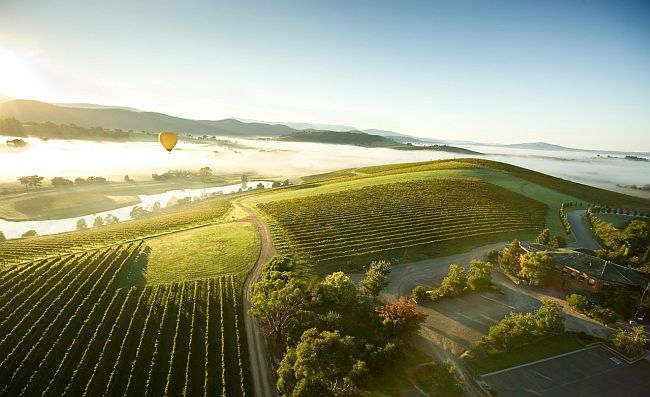 Hot air balloon Yarra Valley