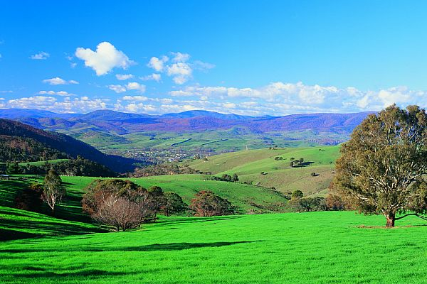 Farmland at Omeo
