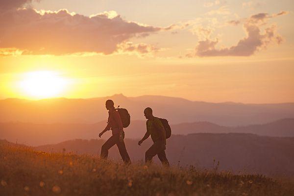 Bushwalking at Razorback