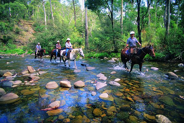 Howqua River - Victoria's High Country