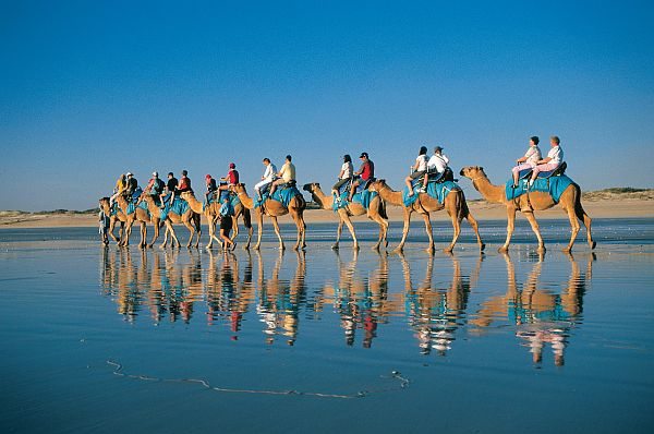 Late afternoon camel ride on Cable Beach, Broome