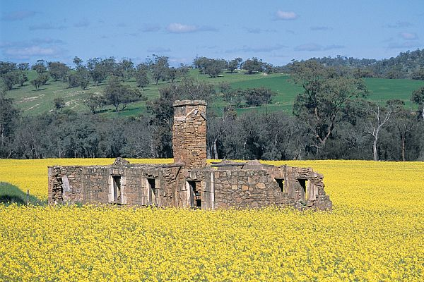 Ruins of the Glenfield Homestead on the Katrine Heritage Trail