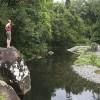 Never Never Creek, Dorrigo NP