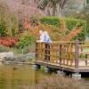 Japanese Gardens Cowra