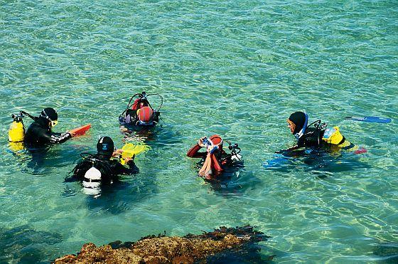 Scuba Diving Noarlunda