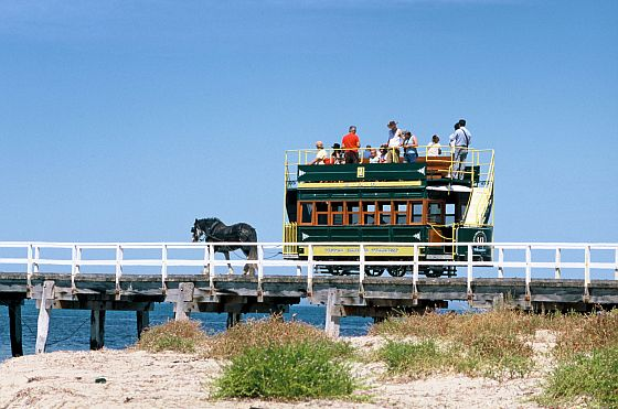 Horse Drawn Tram - Victor Harbour