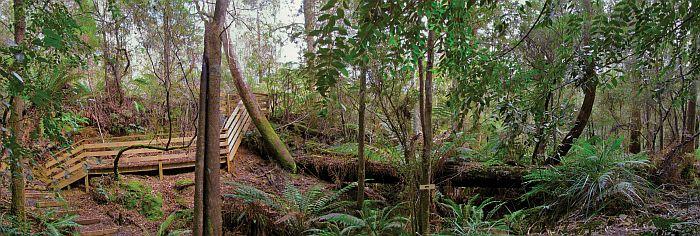 Tin Dragon Trail Cottages