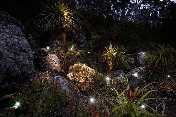 Lumina - A Winter of Festivals