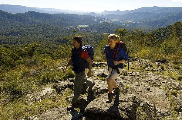 Walking through the Yarra Ranges National Park
