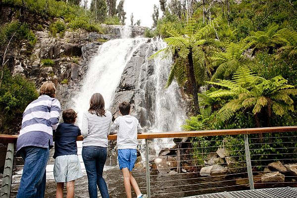 Family viewing Steavenson Falls up close from lookout platform