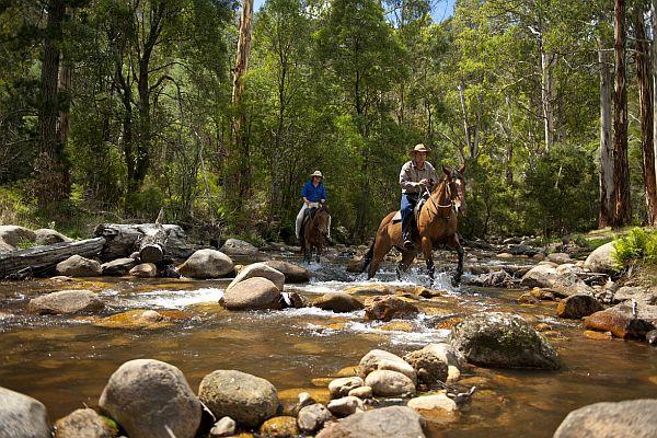Horse riding at Mirimbah