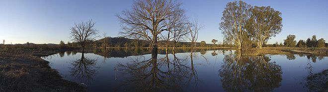 Panorama of Wonga Wetlands, Albury