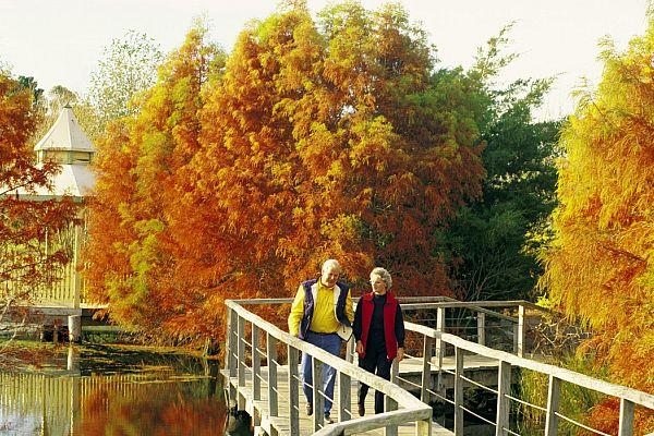 Penshurst Wetland Gardens